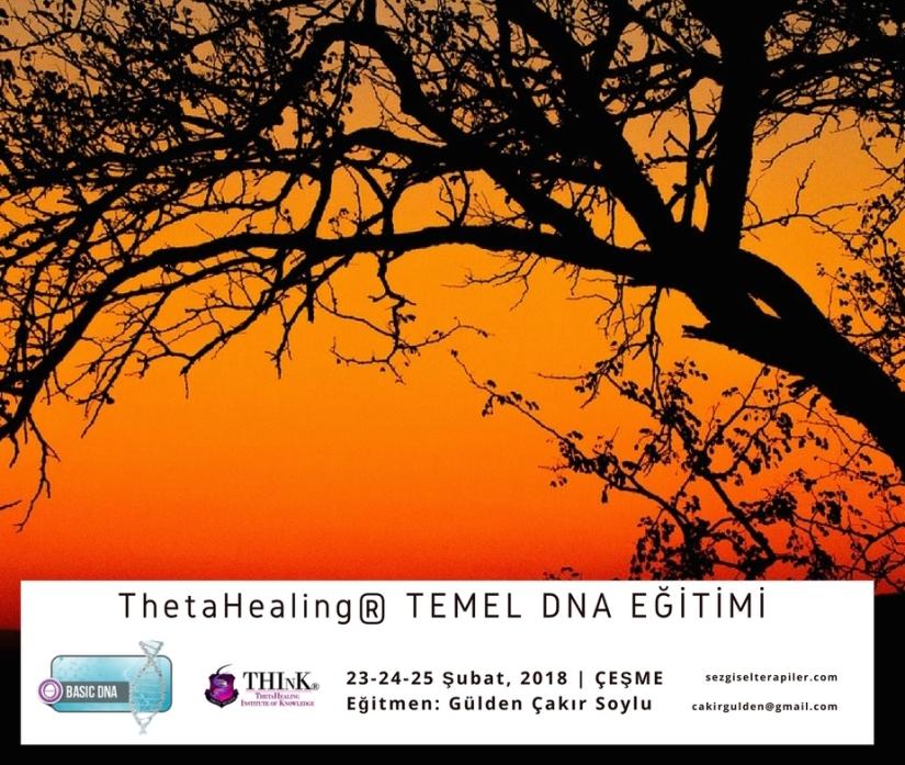 Thetahealing TEMEL DNA EĞİTİMİ-Şubat 2018