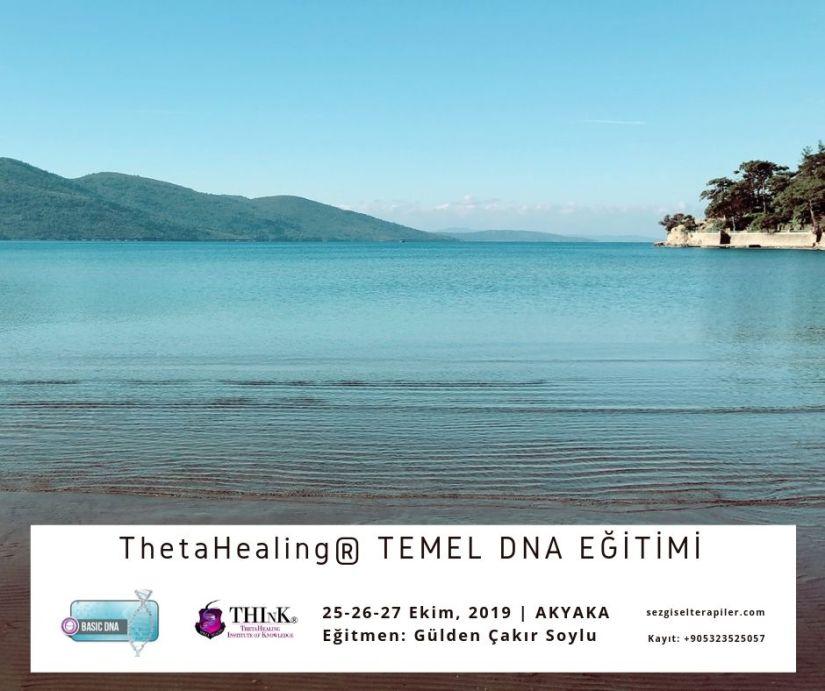 Thetahealing TEMEL DNA EĞİTİMİ Kopyası Kopyası